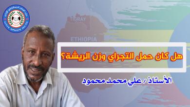 Photo of هل كان حمل التجراي وزن الريشة؟   الأستاذ/ علي محمد محمود
